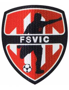 More about Parche FSVIC Stick